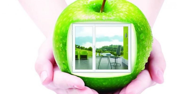 Экологическая чистая окна